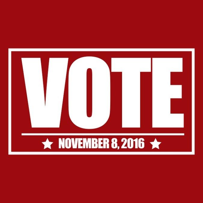vote-1190029_960_720